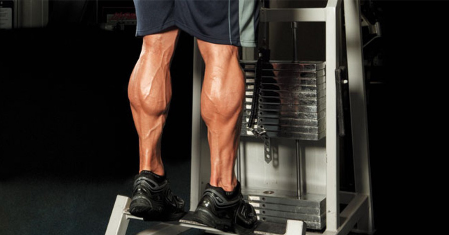 5 Reasons to do Leg Days