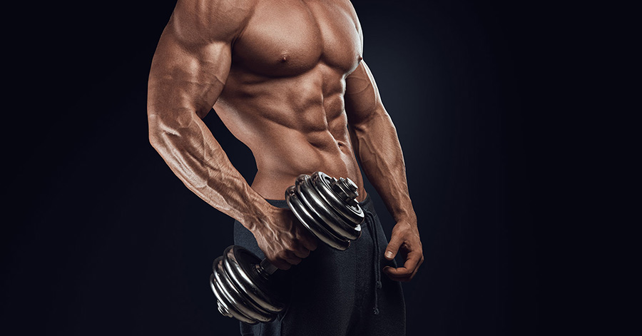 Alphamax Testosterone Booster: Is it Reliable?