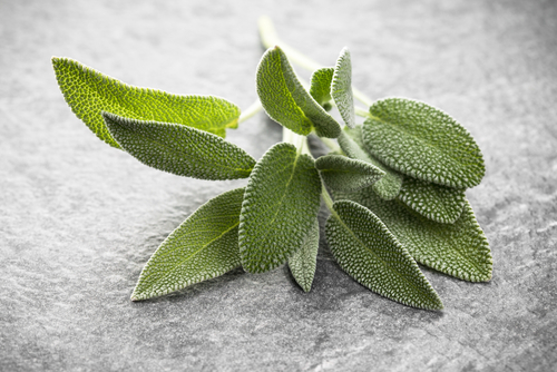 8 Herbs for Treating Inflammation