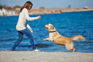 woman playing ball with dog on the beach