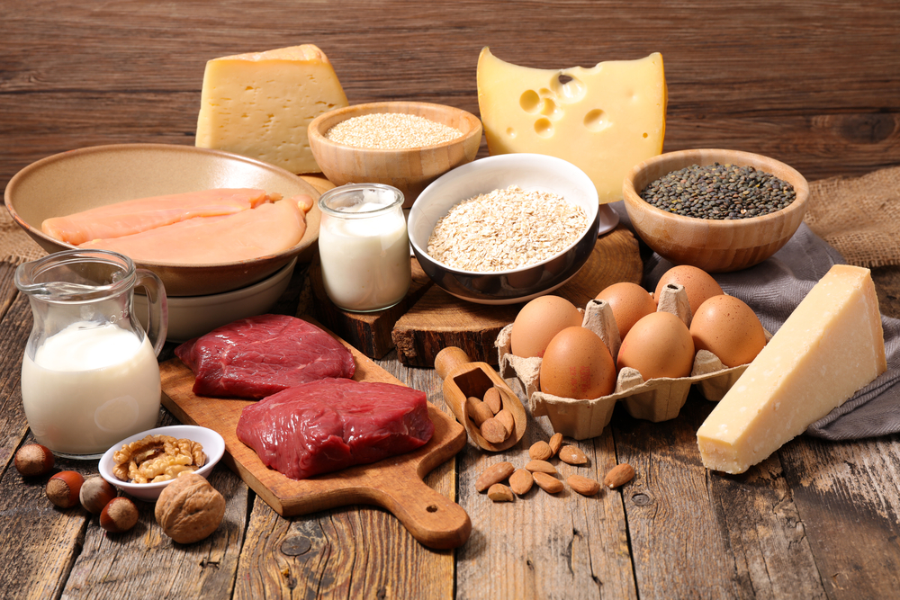 food types that are high in protein