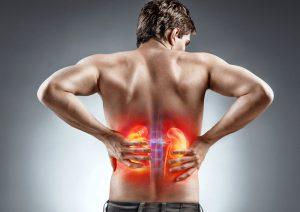 9 Impressive Health Benefits of Tribulus Terrestris