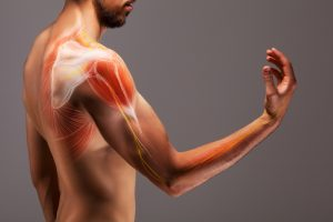 6 Frequent Weight Lifting Injuries At The Gym (And How to Avoid Them)